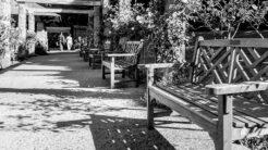 botanic gardens 1024x1024