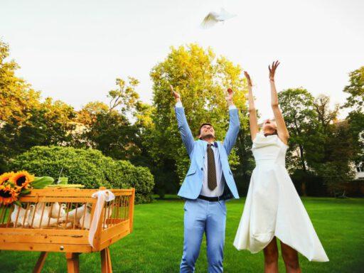 releasing wedding doves